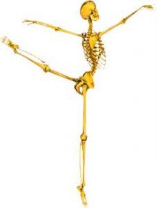 L'ostéopathie et les soins de l'ostéopathe expliqués