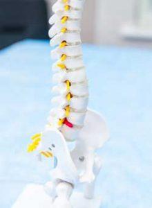 l'ostéopathe traite le mal de dos, les lombalgies, mal au cou et sciatique